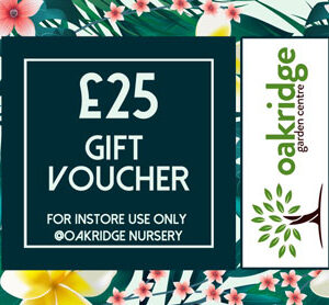 £25 gift voucher in store only